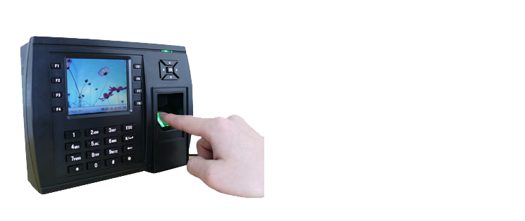 Biometric Attendance TF-70